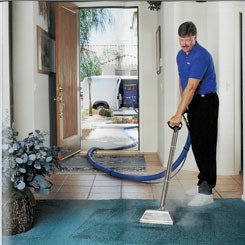Residential professional carpet care